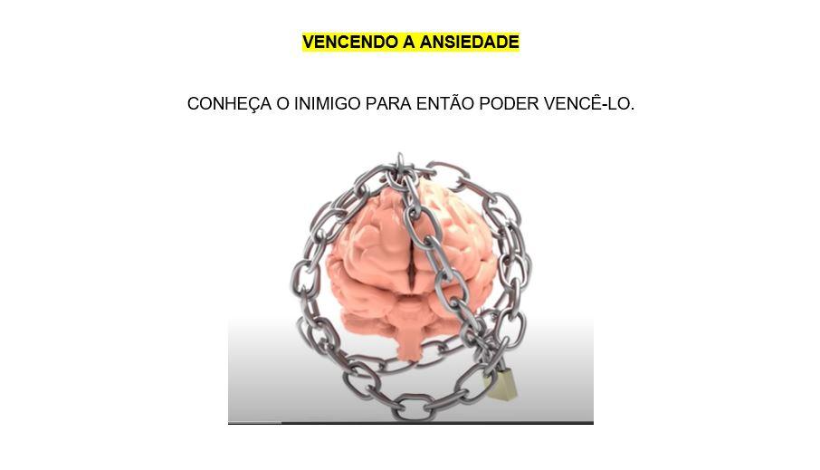 Livro Vencendo a Ansiedade - Pedricio Paulo